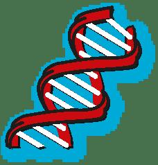 DNA-ve-Genetik-Kod-Vektorel-cizim-ucretsiz-fen-bilimleri